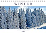 Winter - Zauberhafte Schneelandschaften (Tischkalender 2019 DIN A5 quer): Ein Spaziergang durch märchenhafte Winterlandschaften (Monatskalender, 14 Seiten ) (CALVENDO Natur) - Rose Hurley