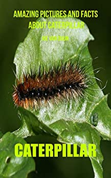 Caterpillar: Amazing Pictures and Facts About Caterpillar Descargar PDF Ahora