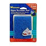 'Wizzard vetro acquario pulitore di alghe acquario detergente Cuscino Blu 3'X 4wzp1