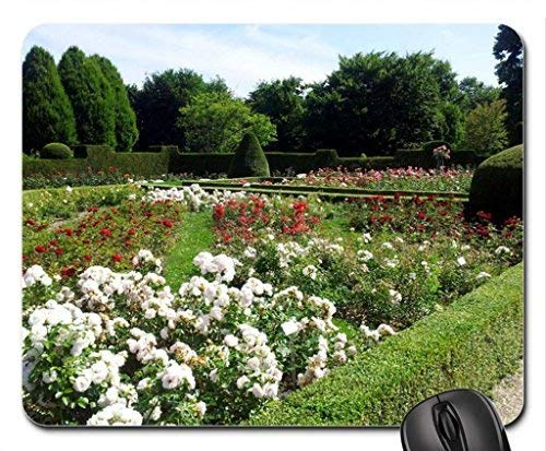 A Walk in The Park Mouse Pad,Flowers Non-Slip Mouse Pad Office Competitive Mouse Pad 18X22cm -