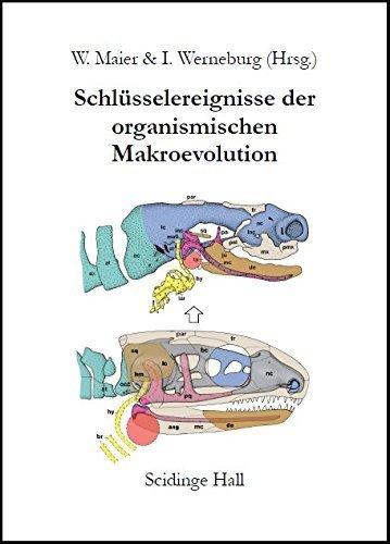 Schlüsselereignisse der Organismischen Makroevolution