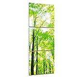 Bilderdepot24 Kunstdruck - Grüner Wald - Bild auf Leinwand - 40x120 cm dreiteilig - Leinwandbilder - Bilder als Leinwanddruck - Wandbild