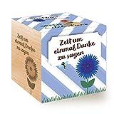Feel Green Celebrations Ecocube, Semi di Fiordaliso Biologico, cubo di Legno con Incisione Laser Zeit Um Einmal Danke zu Sagen, Idea Regalo sostenibile, Set di Coltivazione, Made in Austria