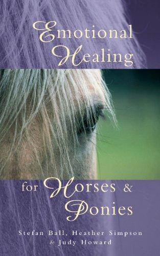 Emotional Healing For Horses & Ponies (Medizin-ball-tier)