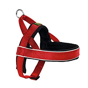 Hunter Racing Norwegian-Style Harness, X-Large, Red