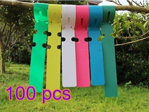 YSHON 100pcs Wrap Around Piante in plastica Nursery Giardino semi albero Marcatori Etichette-2x 20