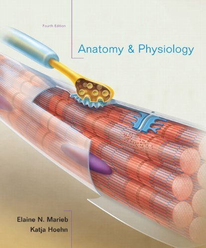 Anatomy & Physiology, 4th Edition 4th (fourth) Edition by Marieb, Elaine N., Hoehn, Katja published by Benjamin Cummings (2010)