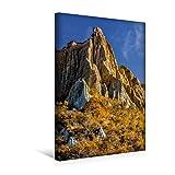 Premium Textil de lienzo 30cm x 45cm alto Mañana en los Abuela rama Clay cliffs, Nueva Zelanda, 30 x 45 cm