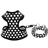 HOMIMP cucciolo imbracatura e guinzaglio per cani di piccola taglia morbida mesh Pet, nero