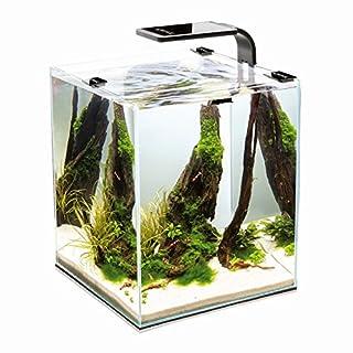 AquaEl Shrimp Set 2 30 Liter weiß