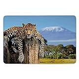 XIAOYI Bathroom Bath Rug Kitchen Floor Mat Carpet,Wildlife Decor,Leopard Sitting on Tree Trunk with Mountain Range Journey Up Kilimanjaro Scene,Tan Blue,Flannel Microfiber Non-Slip Soft Absorbent