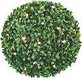 Hellum 350227 LED Buchsbaum Ball 25 cm, mit 30 warm-weiß LED's, inklusiv Trafo