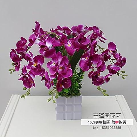 absin Künstliche Blumen Orchideen Blumen Topfpflanzen Keramik Blumentöpfe Placement lila Blumen