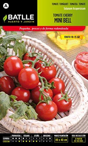 semillas-batlle-tomate-cocktail-tipo-cherry