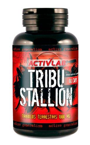 Activlab Tribu Stallion (60 Caps), 1er Pack (1 x 72,60 g)