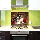 Pantalla antisalpicaduras de cristal / Panel de vidrio templado para cocina, 75 x 60 cm, Cachorros, UltraClear ® Glass