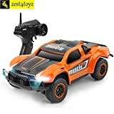 Zest 4 Toyz 4WD High Speed Racing RC Car 1/43 Scale 2.4GHz Mini