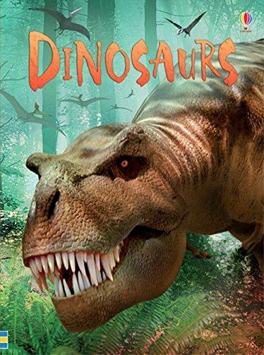 Dinosaurs (Beginners Series) por Stephanie Turnbull