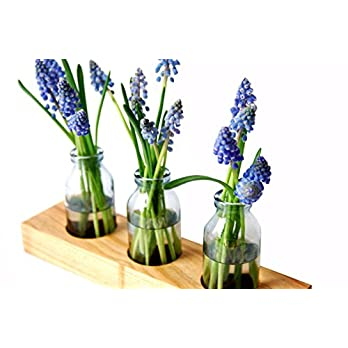 Blumenvase aus Holz und Glas, kleine Vase, Vase, Holzvase