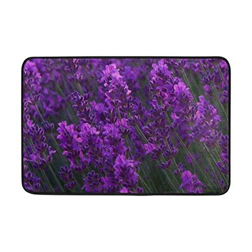JSTEL Lavendel Garten-Fußmatte waschbar Garten Büro Fußmatte, Küche ESS-Living Badezimmer Pet Eintrag Teppiche mit Rutschfeste Unterseite - Lavendel Kürbis