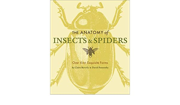 The Anatomy of Insects & Spiders: Over 600 Exquisite Forms: Amazon ...