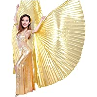 Danza del ventre Costume Swing Wings Gradient Danza Indiana Wings Performance Props With Sticks