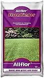 Allflor Eisendünger gegen Moos im Rasen 10kg