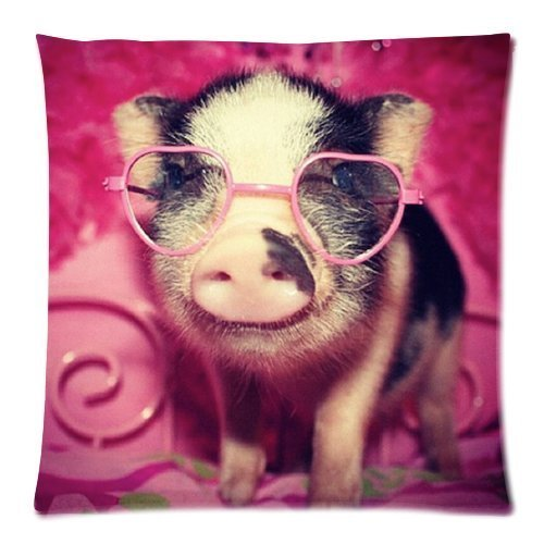 Pillowcases Vintage Little Lovely Cute Baby Pig Throw Pillow Case Sofa Bed Home Decor Cushion Cover 18*18 inches (twin sides) Zippered