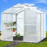 Jago Walk-in Green House 5.36 m³ Polycarbonate Garden Plants Growhouse 190/190/183.3 cm