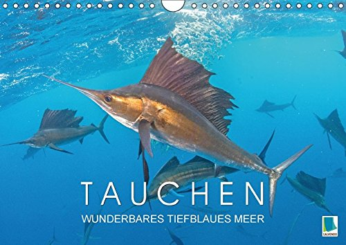 Tauchen: Wunderbares tiefblaues Meer (Wandkalender 2017 DIN A4 quer): Faszination Tauchen in der blauen Tiefe (Monatskalender, 14 Seiten) (CALVENDO Sport)