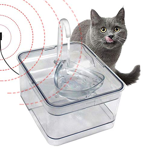 Pet Dispensador automático agua 2.6L Cat