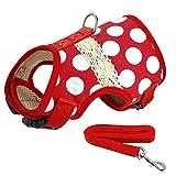 XIAOLANGTIAN Soft Printed Hundegeschirr und Leine Pet Puppy Cat Weste Jacke Für Kleine Mittlere Hunde Teddy Chihuahua Yorkies Weste SML XL, Red Dot, S