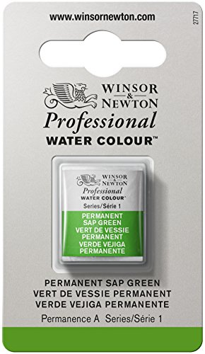 winsor-and-newton-artists-watercolour-permanent-sap-green-1-half-pan