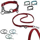 CarlCurt - Training Line: Retriever-Halsband & 6 in 1 Multifunktionshundeleine Im Set Aus Strapazierfähigem Nylon, L 43-60cm & L 1,90m, Rot