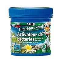 JBL FilterStart Pond Bactéries pour activer les filtres de bassin Raccourcissent la durée de démarrage biologique à quelques jours.Dégradent immédiatement lammonium/ammoniaque et les nitrites.Bactéries immobilisées sur un support facile à épandre dan...