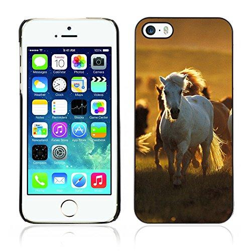 Graphic4You Pferd Tier Design Harte Hülle Case Tasche Schutzhülle für Apple iPhone 5 und 5S Design #5