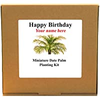 Personalised Happy Birthday Miniature Date Palm Planting Kit - Unusual Indoor Gardening Gift