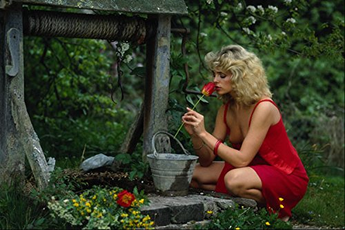 688096 Girl In Red Dress By Well A4 Photo Poster Print 10x8