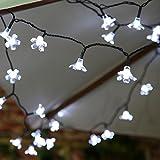 Guirlande Solaire Fleur 50 LED 5 Mètres par Festive Lights (Blanc)