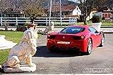 NoLimits24 Erlebnisgutschein - Ferrari 458 Italia fahren - 60 Minuten in Kirchen - Hausen (Baden-Württemberg, Deutschland)