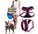 CERBERUS Front Range Hundegeschirr Anpassung Outdoor Adventure Pet Weste mit Griff Easy Control,Pink,M