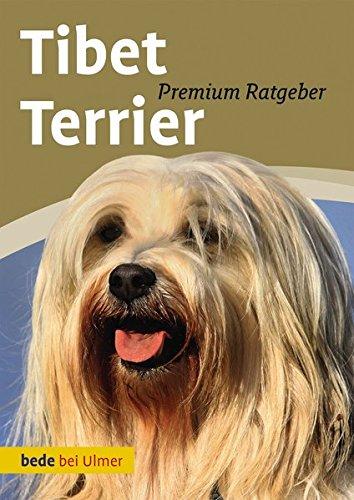 Tibet Terrier -