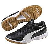 Puma Unisex-Erwachsene Tenaz Multisport Indoor Schuhe