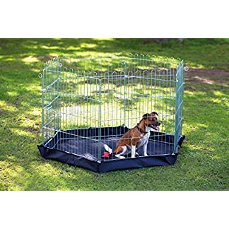6 Sided Pet Pen with Base 51VJ35yZpKL