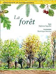 Découvrir et comprendre la forêt