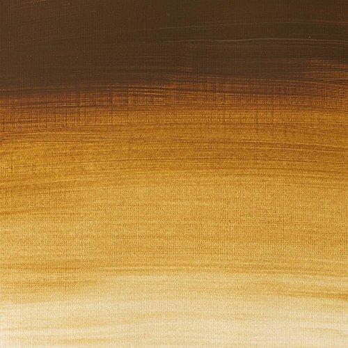 Winsor & Newton Professional Acrylic 60ml Raw Umber Light Series 1 (557)