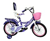 Hollicy Funtoosh 16 Plastic Bicycle, Kids 16-inch (Blue)