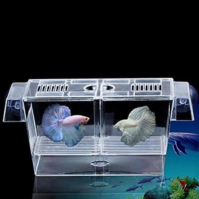 LEORX Fischzucht-Inkubator schwimmende Brüterei Züchter Case Aquarium (Transparent)