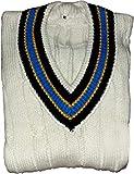3M Cricket World Herren Cricket-Pullover, langärmelig, schwere Wolle, Cricket-Pullover mit V-Ausschnitt, 28