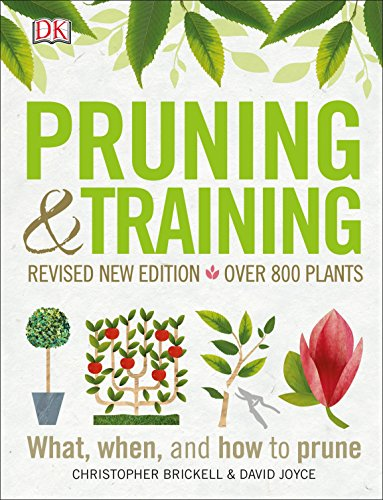 Pruning and Training, Revised New Edition: What, When, and How to Prune -